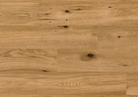 146 001 01 Oak Antique