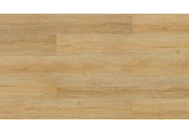 E1XG001 Elegant Light Oak