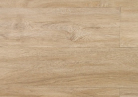 24243Q Colombia Pine